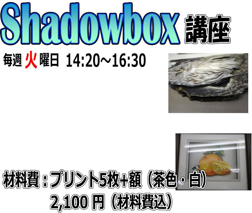Shadowboxkomaeweb