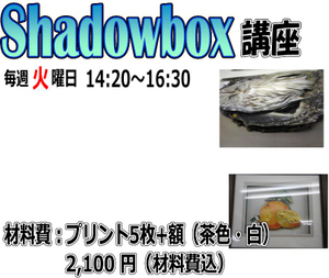 Shadowboxkomaeweb_2