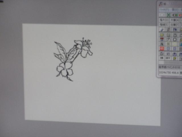 P4030005